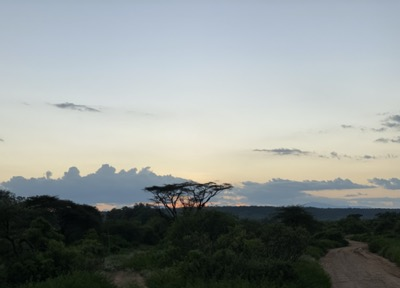 amazing sunset in Samburu