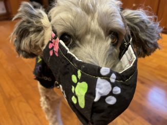 Maggie in a mask